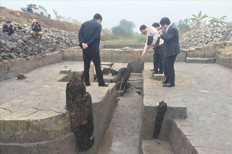 Phát hiện thêm bãi cọc cổ hàng nghìn tuổi Quảng Ninh