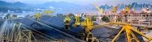Công ty Cổ phần Kinh doanh than miền Bắc - Vinacomin bị phạt tiền 50.000.000 đồng