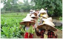"""Hà Nội - đất trăm nghề """"se duyên"""" nông nghiệp với du lịch sinh thái"""