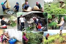 17 mục tiêu phát triển bền vững Việt Nam đến năm 2030