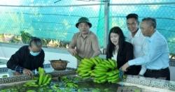 """Bộ trưởng Nguyễn Xuân Cường: Ngành Nông nghiệp đã phải chịu rủi ro """"kép"""""""