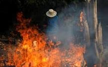 Cháy rừng Amazon - G7 họp khẩn, dọa bỏ hiệp định thương mại với Brazil