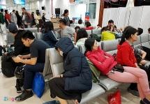 Bộ GTVT cân nhắc nâng mức bồi thường hành khách bị delay lên 170 triệu
