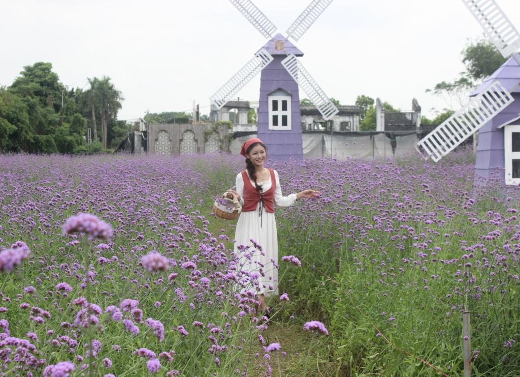 Giới trẻ kéo nhau tới vườn hoa oải hương thảo để lưu lại những khoảnh khắc đẹp