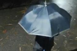 Truy tìm tên cướp cầm ô đi gây án trong đêm tối tại Đông Anh