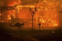 Cháy rừng tại miền Đông Australia có thể chấm dứt vào cuối tuần