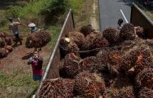 Chính phủ Malaysia muốn người dân bớt kén việc làm để thúc đẩy kinh tế