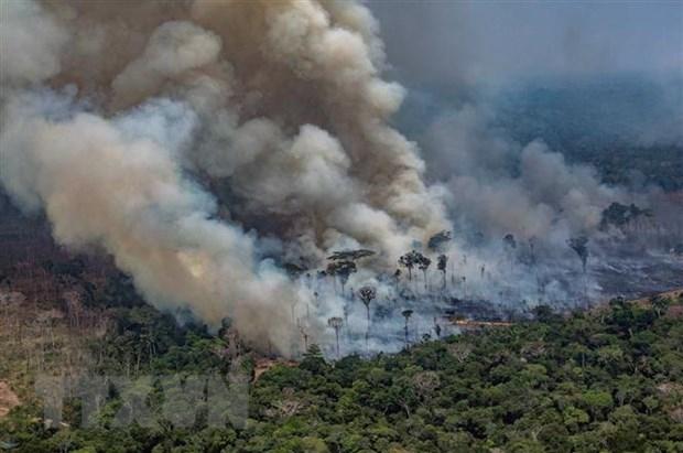 peru colombia de nghi to chuc hoi nghi thuong dinh khu vuc amazon