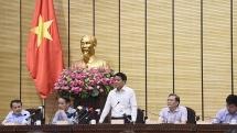 Vụ Đồng Tâm: Ông Lê Đình Kình không có quyền, lợi ích hợp pháp ở vùng đất thuộc sân bay Miếu Môn