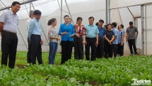 Phát triển nông nghiệp, xây dựng nông thôn mới nâng cao đời sống nông dân
