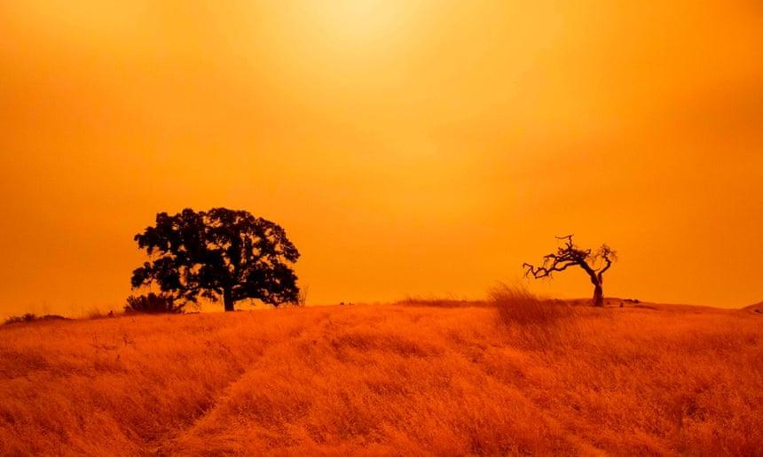 Sắc trời chuyển màu cam ở Concord, California, Mỹ do những đám cháy rừng hoành hành. Ảnh: AFP.