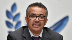 Tổng Giám đốc WHO: Vaccine ngừa COVID-19 có thể sử dụng vào cuối năm