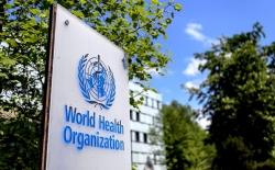 WHO điều tra ổ dịch 65 ca lây nhiễm COVID-19 trong nội bộ