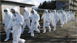 Nhật Bản đối mặt với dịch cúm gia cầm lây lan nhanh chóng