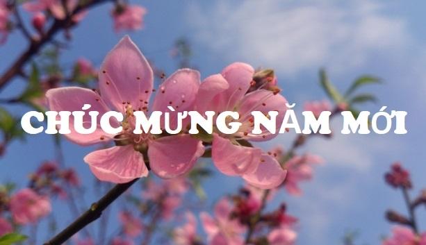 chuc mung cong dong doanh nhan doanh nghiep dip tet canh ty 2020