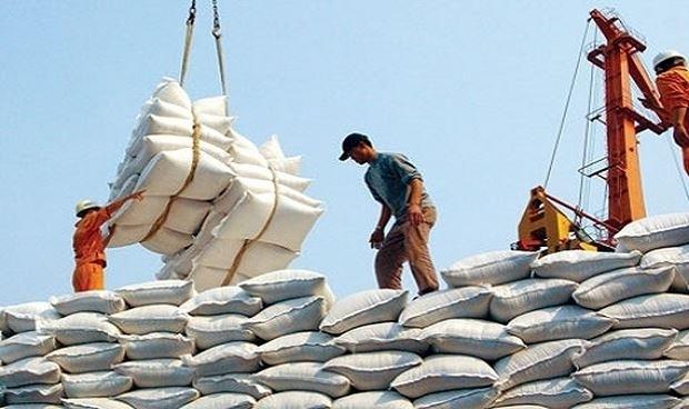 Giá gạo xuất khẩu cao kỷ lục