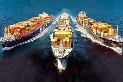 Chính phủ yêu cầu kiểm tra, làm rõ việc tăng giá cước tàu biển và container