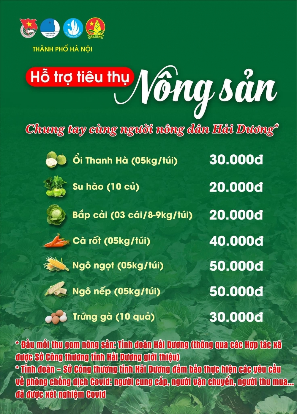 Thành đoàn Hà Nội kêu gọi chung tay giải cứu nông sản Hải Dương
