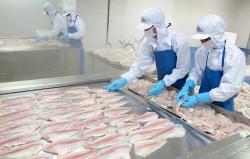 Cảnh báo mối lo nghiêm trọng của thủy sản Việt Nam