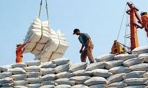 Thủ tướng yêu cầu xử lý nghiêm việc đầu cơ, thao túng giá gạo