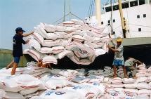 Chính thức ban hành quyết định thanh tra việc xuất khẩu gạo