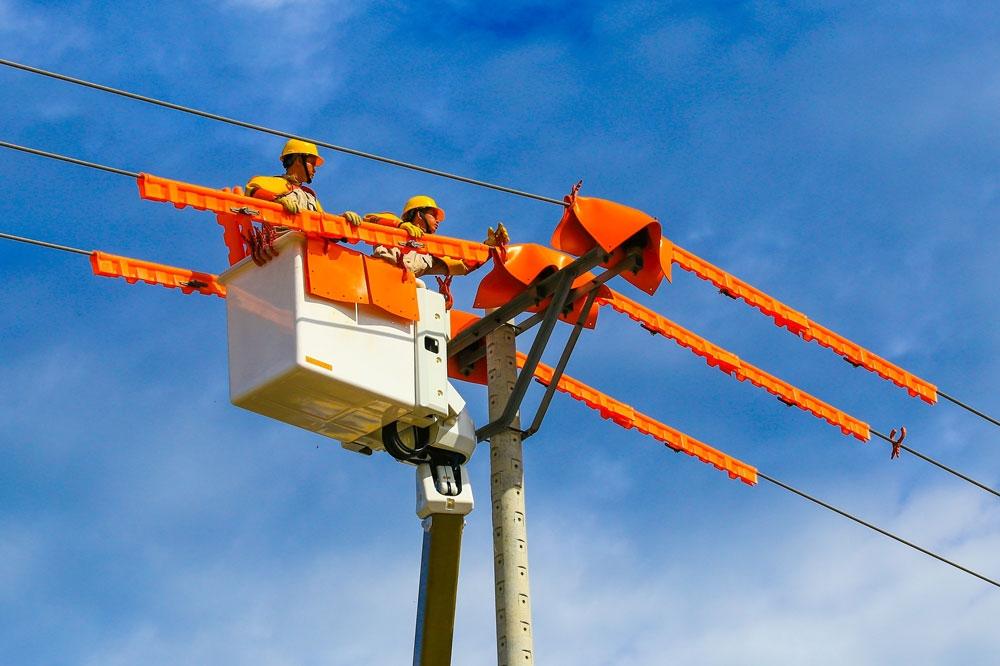 Lo thừa điện, EVN sẽ tiếp tục cắt giảm điện tái tạo