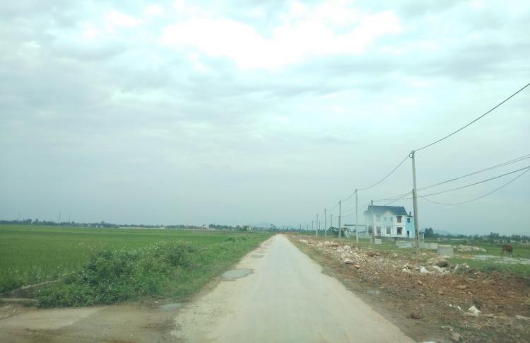 Hậu Lộc - Thanh Hóa: Hé lộ những bất minh khi đền bù, giải phóng mặt bằng dự án đường giao thông