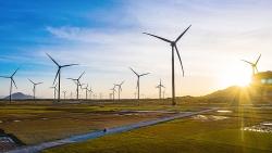 Trungnam Group bán hơn 35% cổ phần nhà máy điện gió cho đối tác Nhật Bản