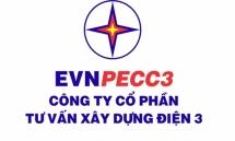Giá rao bán gần gấp đôi thị trường, không ai mua cổ phần tại EVNPECC3 của EVN