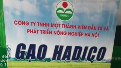 Hơn 1.900 doanh nghiệp nợ thuế ở Hà Nội