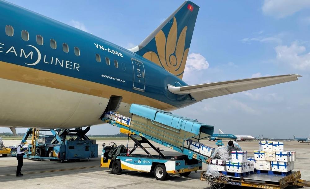Vietnam Airlines bố trí riêng một siêu máy bay chở vải thiều Bắc Giang vào TP HCM