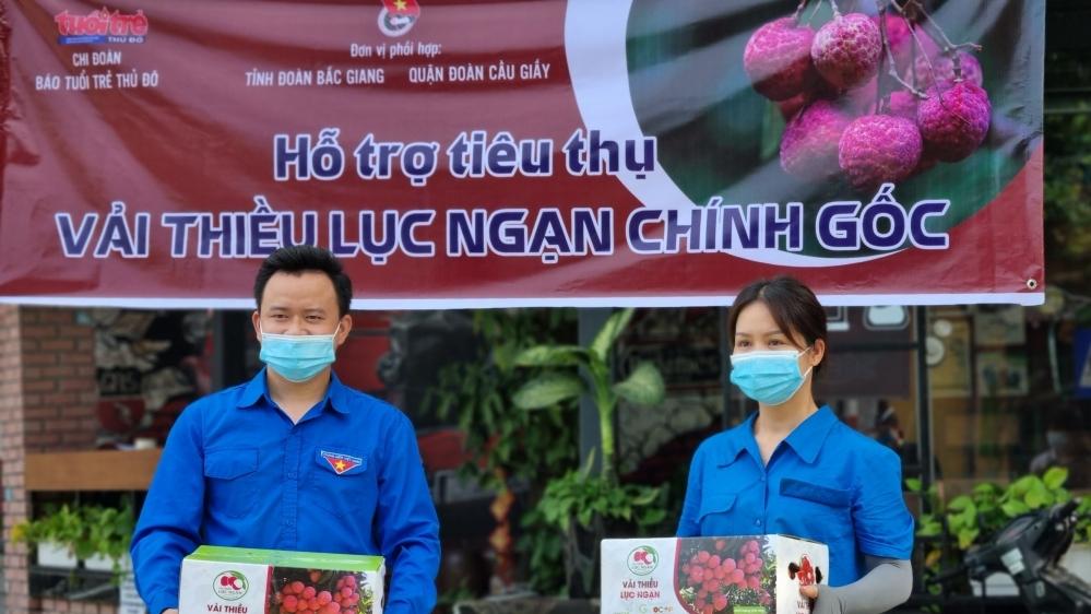 Chi đoàn Báo Tuổi trẻ Thủ đô kết nối, hỗ trợ tiêu thụ vải thiều Bắc Giang