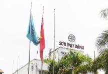Doanh nghiệp sở hữu thương hiệu Sơn Đại Bàng bị phạt 350 triệu đồng