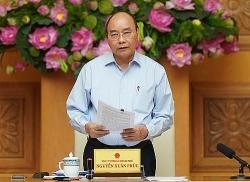 Thủ tướng thúc thực hiện ngay các giải pháp giảm giá thịt lợn