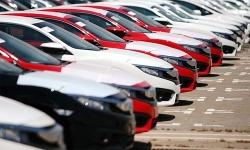 Mỗi ngày có khoảng 214 ô tô nguyên chiếc nhập khẩu vào Việt Nam