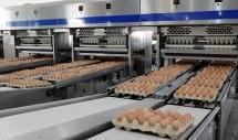 Đại gia ngành thép Hòa Phát bán trứng gà nhiều nhất miền Bắc