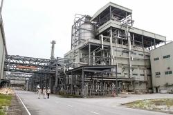 Phó Thủ tướng thúc nhanh xử lý các dự án nghìn tỷ thua lỗ ngành Công thương