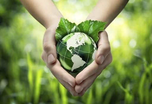 Việt Nam hoàn thành đóng góp 1 triệu USD cho Quỹ Khí hậu Xanh