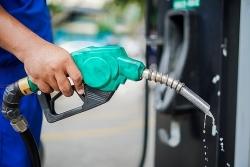 Xăng dầu tăng giá nhẹ