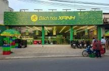 bach hoa xanh tham vong vuot doanh thu chuoi the gioi di dong