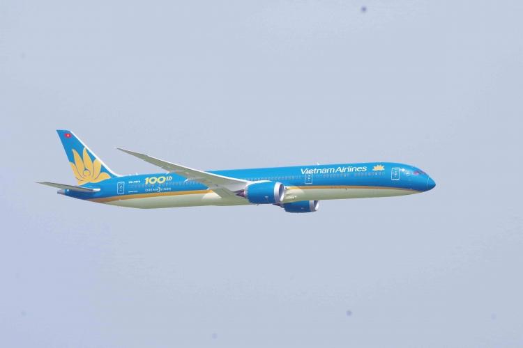 vietnam airlines nhan van chuyen dao mai dip tet canh ty 2020