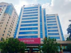 """Agribank """"khốn đốn"""" thu hồi khoản vay hàng tỷ đồng của Công ty Hải Thành"""