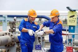 Hóa dầu Petrolimex, Dệt kim Hà Nội, May quốc tế Thắng Lợi bị phạt vi phạm thuế