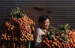 """""""Bắt bệnh"""" hàng Việt Nam khó cạnh tranh tại siêu thị nước ngoài"""