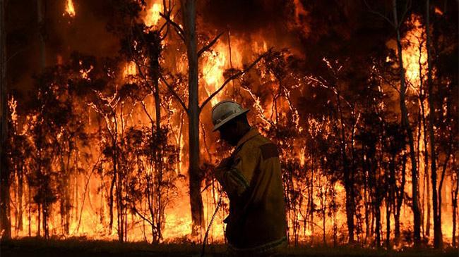 """Những con số """"biết nói"""" trong ngọn lửa """"địa ngục"""" ở Australia"""