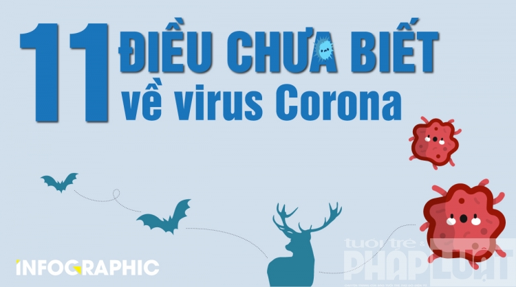11 dieu co the ban chua biet ve virus corona