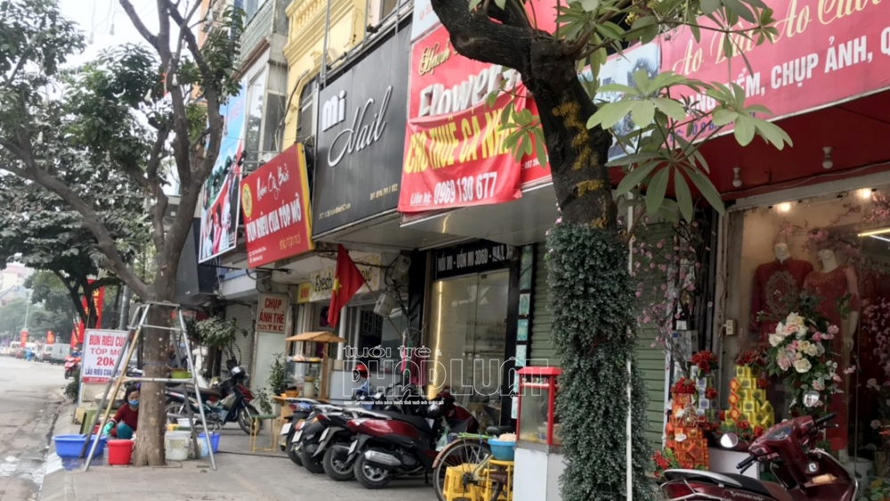Hai cây xung quanh cây bưởi nói riêng và các cây trên đường Trần Khát Chân nói chung đều được đánh số bằng sơn vàng