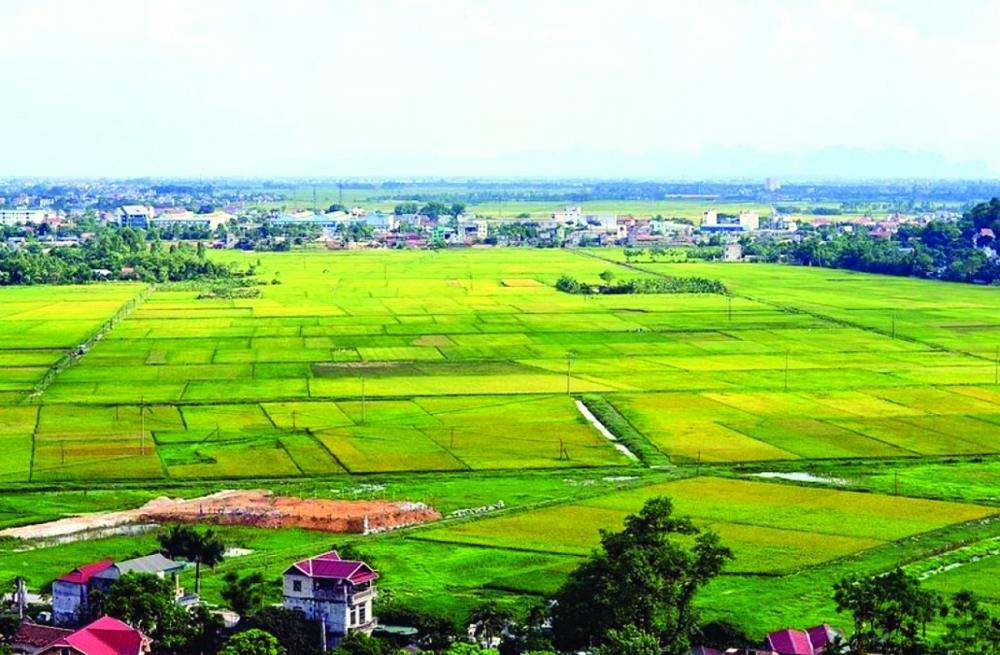 , sản xuất nông nghiệp có nhiều khởi sắc, lĩnh vực sản xuất lúa và nuôi trồng thủy sản vẫn giữ vai trò mũi nhọn, đóng góp quan trọng vào sự phát triển kinh tế địa phương.