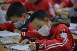 Ninh Bình: Học sinh ngừng đến trường từ 10/5, kết thúc năm học trước 20/5