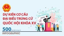 [Infographic] Dự kiến cơ cấu đại biểu trúng cử Quốc hội khóa XV